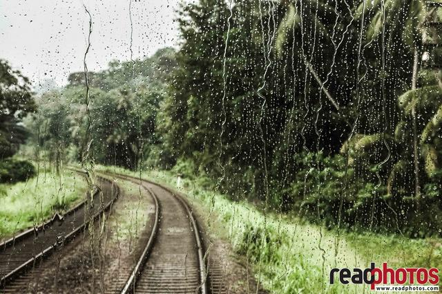 Rail road through a forest, rainy day, Sri Lanka