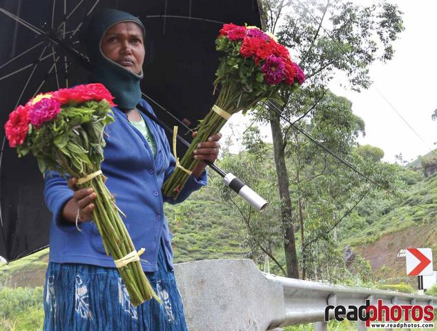 Women selling roses, Nuwara Eliya, Sri Lanka - Read Photos