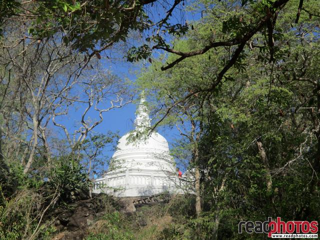 Small pagoda in a rural place, Sri Lanka - Read Photos