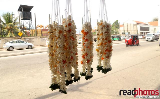 Flowers to sell, Sri Lanka - Read Photos