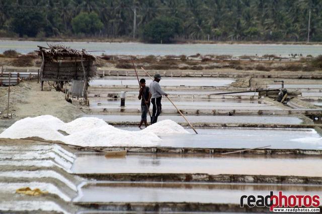 Two men work at a saltern, Sri Lanka - Read Photos