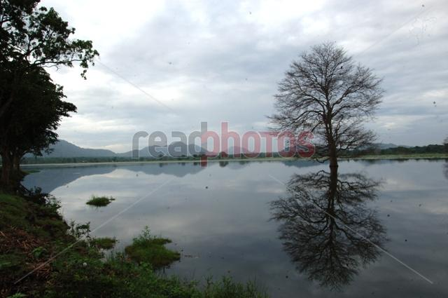 Silent lake, Sri Lanka
