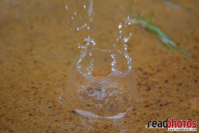 Drop of water, Sri Lanka - Read Photos