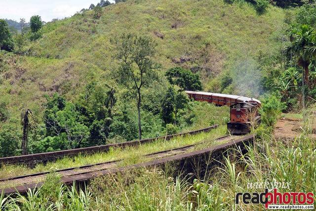 Up country railroad, Sri Lanka