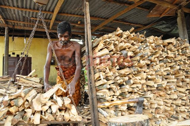 Firewood seller, Sri Lanka - Read Photos
