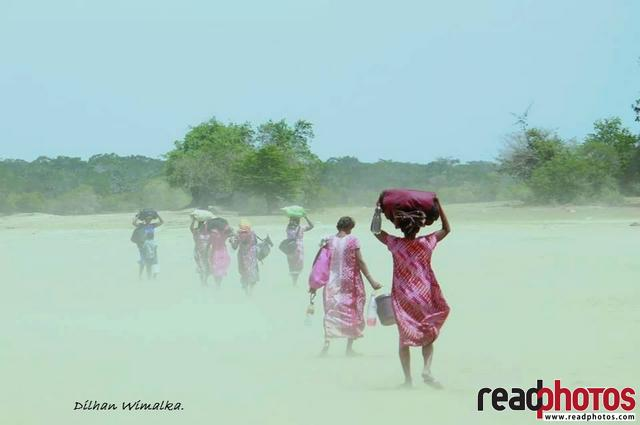 Walking into the dust, Sri Lanka - Read Photos