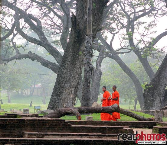 Happy monks, Sri Lanka (3) - Read Photos