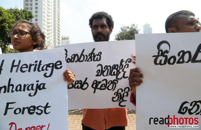 Protest to protect sinharaja forest, Sri Lanka (3)