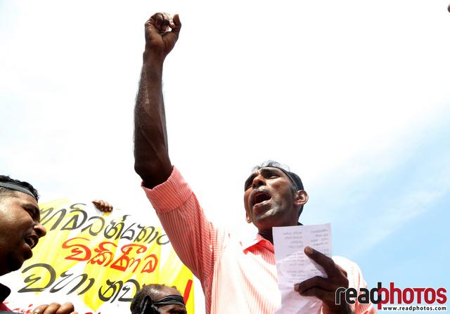 Protest In Sri Lanka - 1