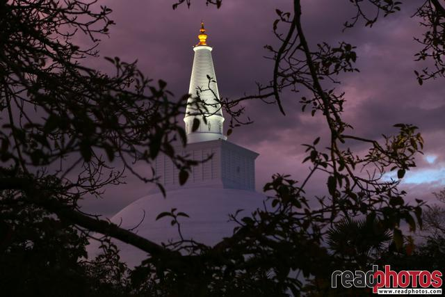Ruwanwali pagoda new, Sri Lanka  - Read Photos