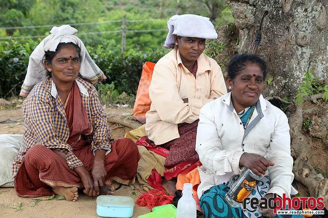 Sri Lankan estate workers