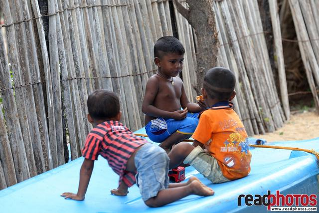 Mannarthota, Thalei Mannar, Sri Lanka (3)