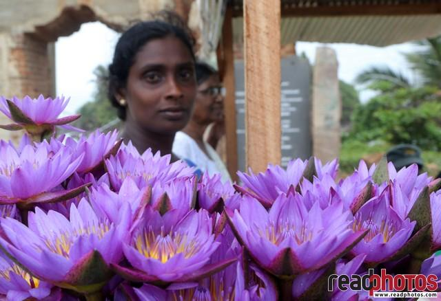 Flower selling happy lady, Matara, Sri Lanka