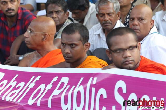Buddhist monks at a protest, Sri Lanka 2019 (2)