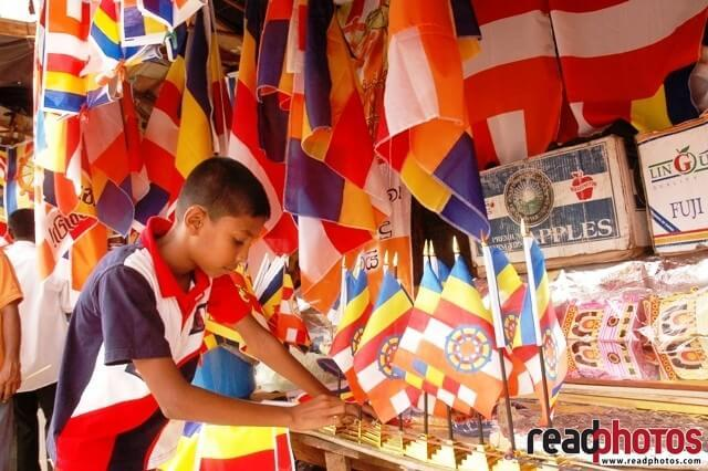 Small boy selecting Buddhist flags, Sri Lanka