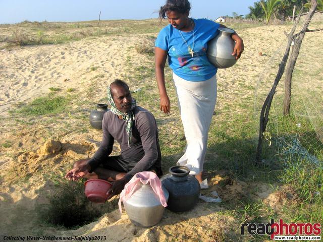 Kalpitiya Uchchamunei Island Sri Lanka - Read Photos