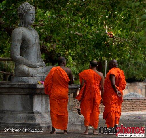 Three monks at a Buddha statue, Sri Lanka