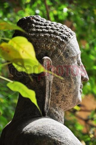 Clam Buddha statue, Sri Lanka - Read Photos