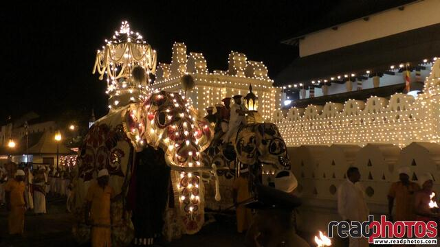 The Kandy Esala Perahera also known as The Festival of the Tooth 2018 (1)