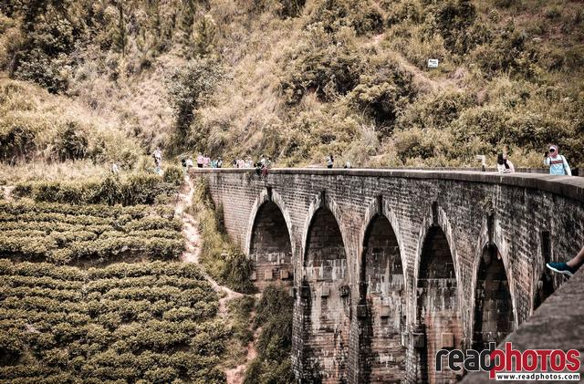 9 Arches bridge in Sri Lanka  - Read Photos