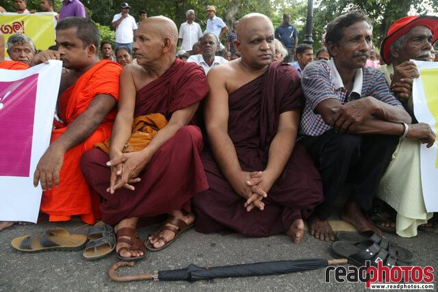 Buddhist monks at a protest, Sri Lanka 2019 (1)