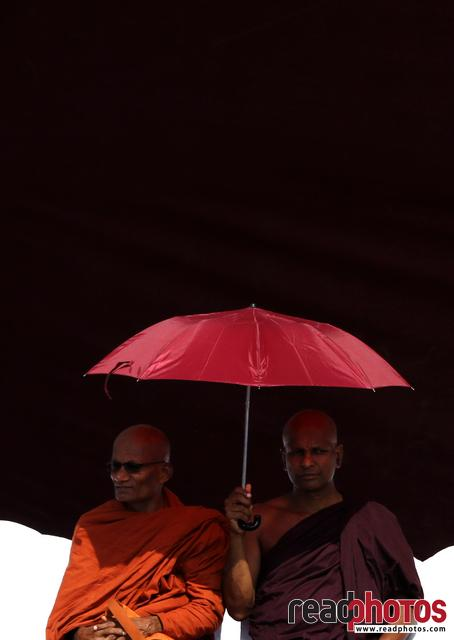 Buddhist monks at an assembly, Sri Lanka (1)
