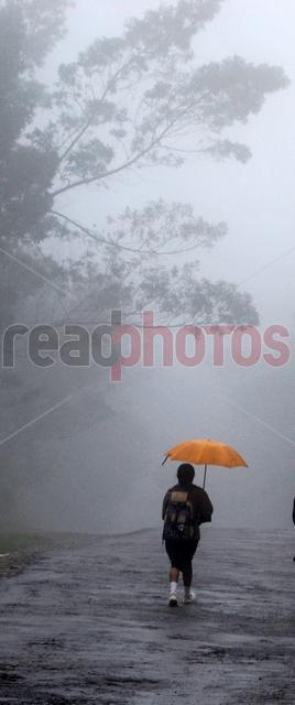 School girl travel through mist, Sri Lanka