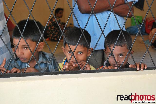 3 boys, Sri Lanka - Read Photos