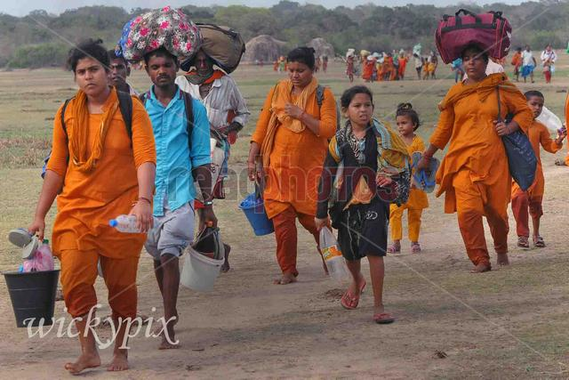 Devotees, Journey to katharagama by foot in Sri Lanka