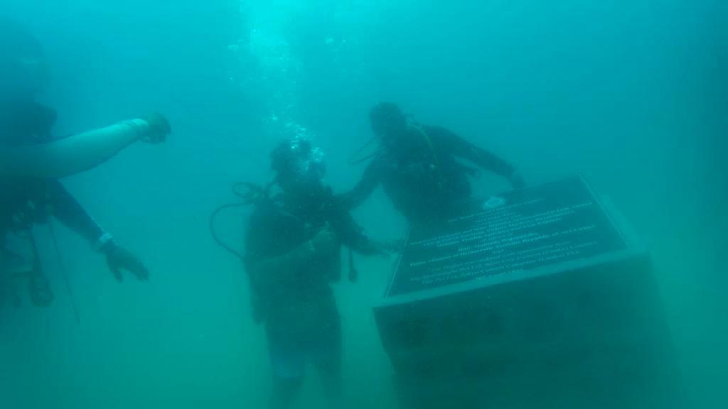Underwater Gallery Nilwella