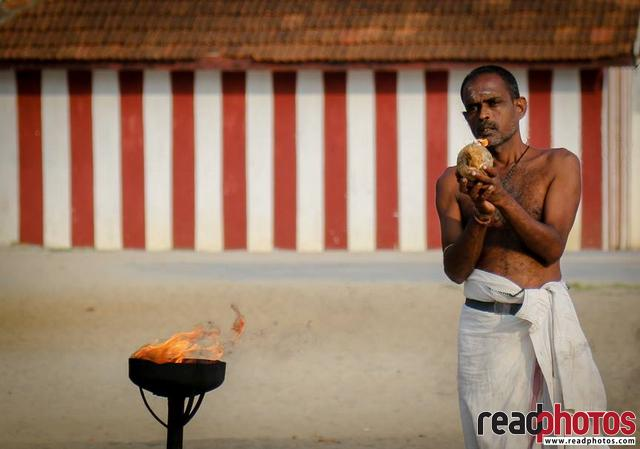 Devotee worshiping in a hindu kovil - Read Photos