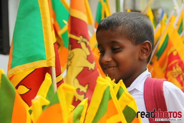 Independence day, National flag, Sri Lanka - Read Photos