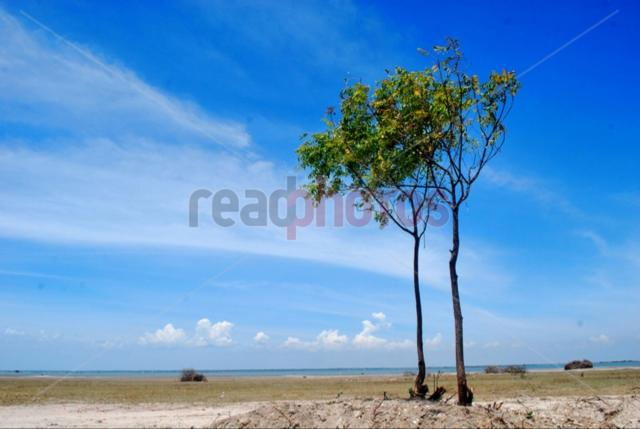 Arali point lagoon, Jaffna in Sri Lanka - Read Photos