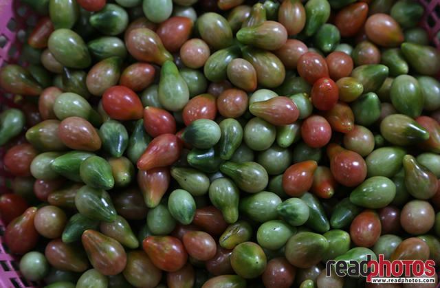 Tomatoes, Thalawakale, Sri Lanka