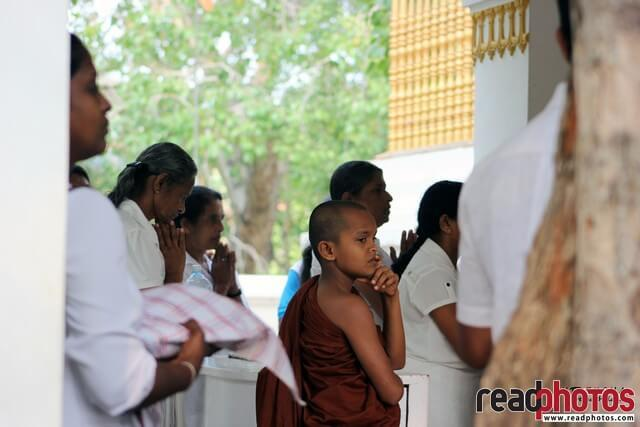 Little monk at Anuradhapura, Sri Lanka