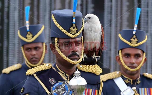 War hero memorial, Soldier with a eagle Sri Lanka.