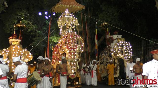 Kandy esala perahara, festival of the tooth, Sri Lanka (3)