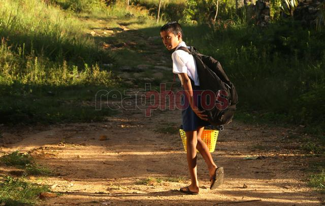 School boy in Passara, Madolsima, Sri Lanka - Read Photos