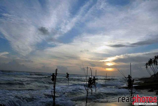 Fishermen on sticks, Sri Lanka