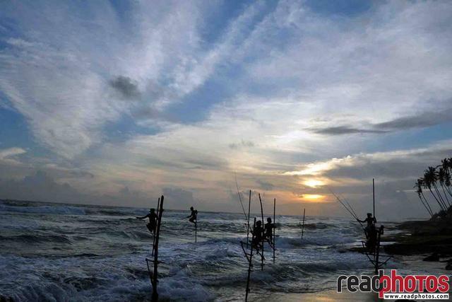 Fishermen on sticks, Sri Lanka - Read Photos