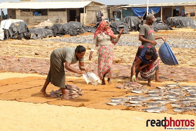 Working women, dry fish industry, Sri Lanka
