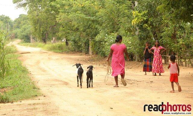 Villagers, Welikanda, Sri Lanka  - Read Photos