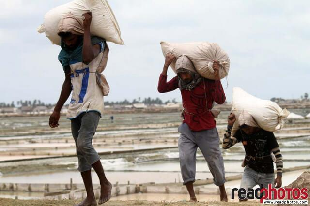 People working in a saltern, Sri Lanka - Read Photos