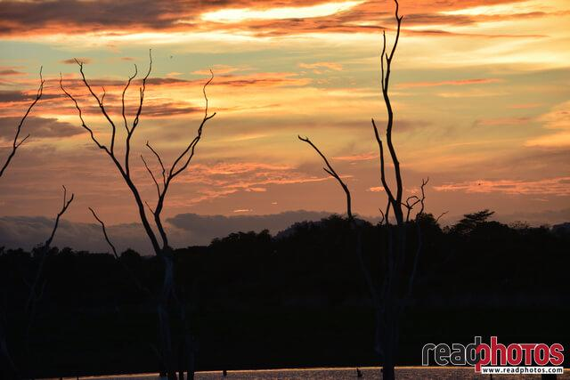 Evening sunset, Sri Lanka - Read Photos