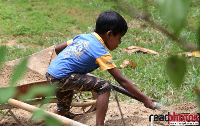 Little boy hard working with a shovel, Sri Lanka - Read Photos