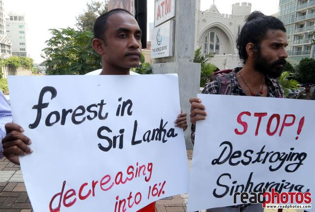 Protest to protect Sinharaja forest, Sri Lanka(4)