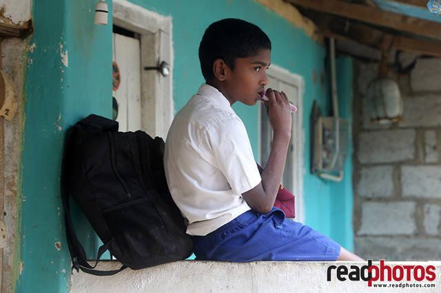 School boy, Thalawa kale, Sri Lanka - Read Photos