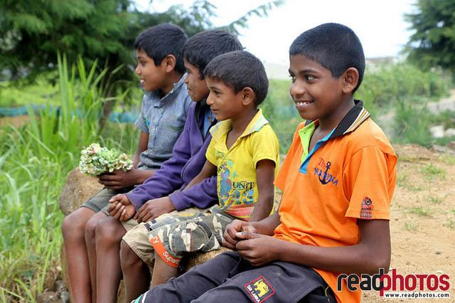 Kids upcountry Sri Lanka 7 - Read Photos