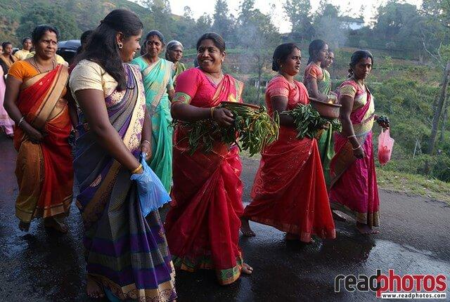 Smiling ladies at a cultural event, Sri Lanka - Read Photos