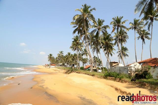 Cloudy beach, noon, Chilaw, Sri Lanka - Read Photos